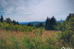 mazgalica-widok-scaled