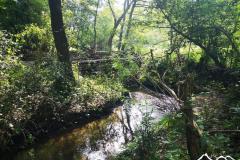 mleczka-rzeka-scaled