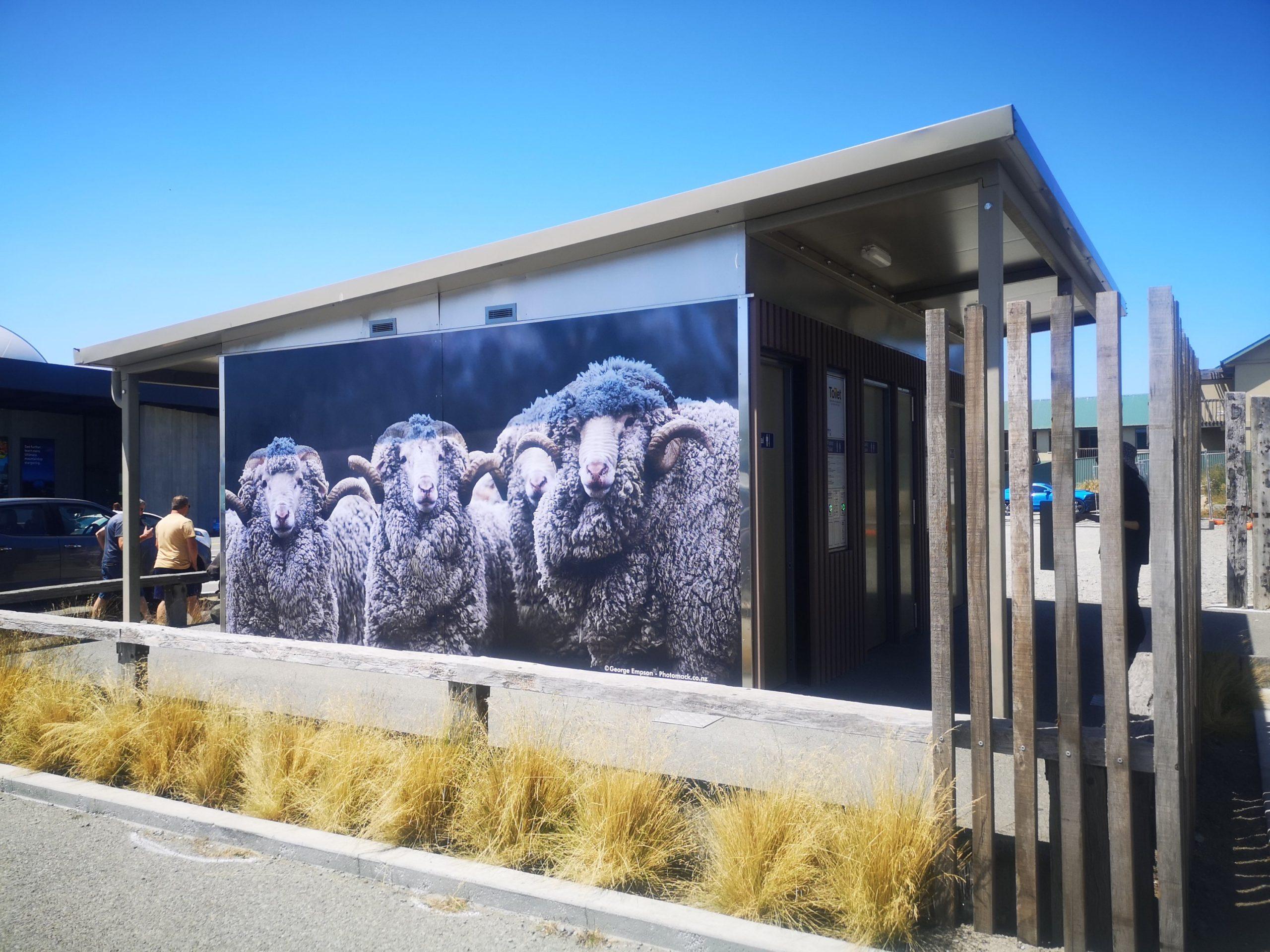 Czym zaskoczyła nas Nowa Zelandia? - dużo toalet