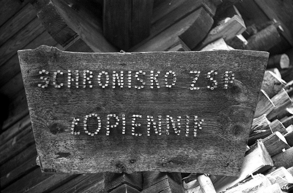 Schronisko na Łopienniku